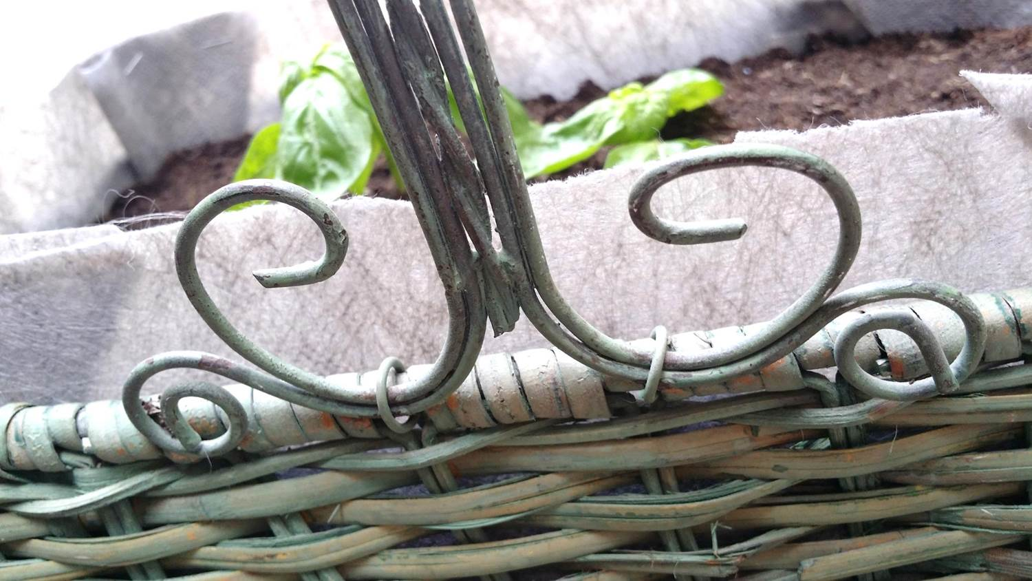 WENHUA DUVERGÉ - Romantic vegetable garden in recycled flower basket